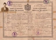 Dimitrios Aroney's passport, 1916.