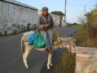 man on donkey, Potamos