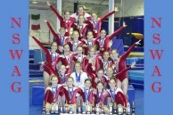 New South Wales Amateur Gymnastics Team. 2006.