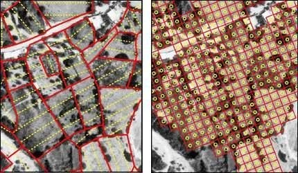 Archaeological Survey: Methods and Preliminary Results - Archaeology Kastri explored by tractwalking 1