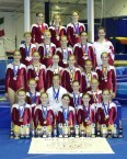 New South Wales. Amateur Gymnastics. 2006. Team.