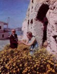 Writer Jan Lipman, and Mr George Calligeros, gather marguerite daisies...