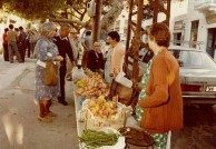 POTAMOS MARKETS