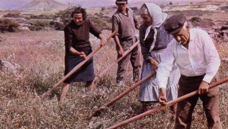 Traditional farming implements are often preferred to modern equipment.