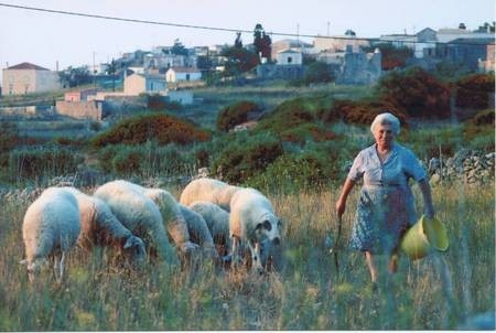Working in the fields of Kythera