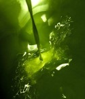 Dimitris Koutrafouris: Olive oil pouring from the press
