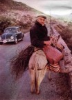 Mr Spyros Haros rides home after a day's work in the fields...