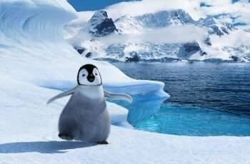 George Miller. Film Producer. Mumble, the hero of Happy Feet.